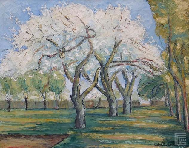 Proleće u Šidskim baštama, 1934